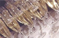 rent champagne flutes orlando florida